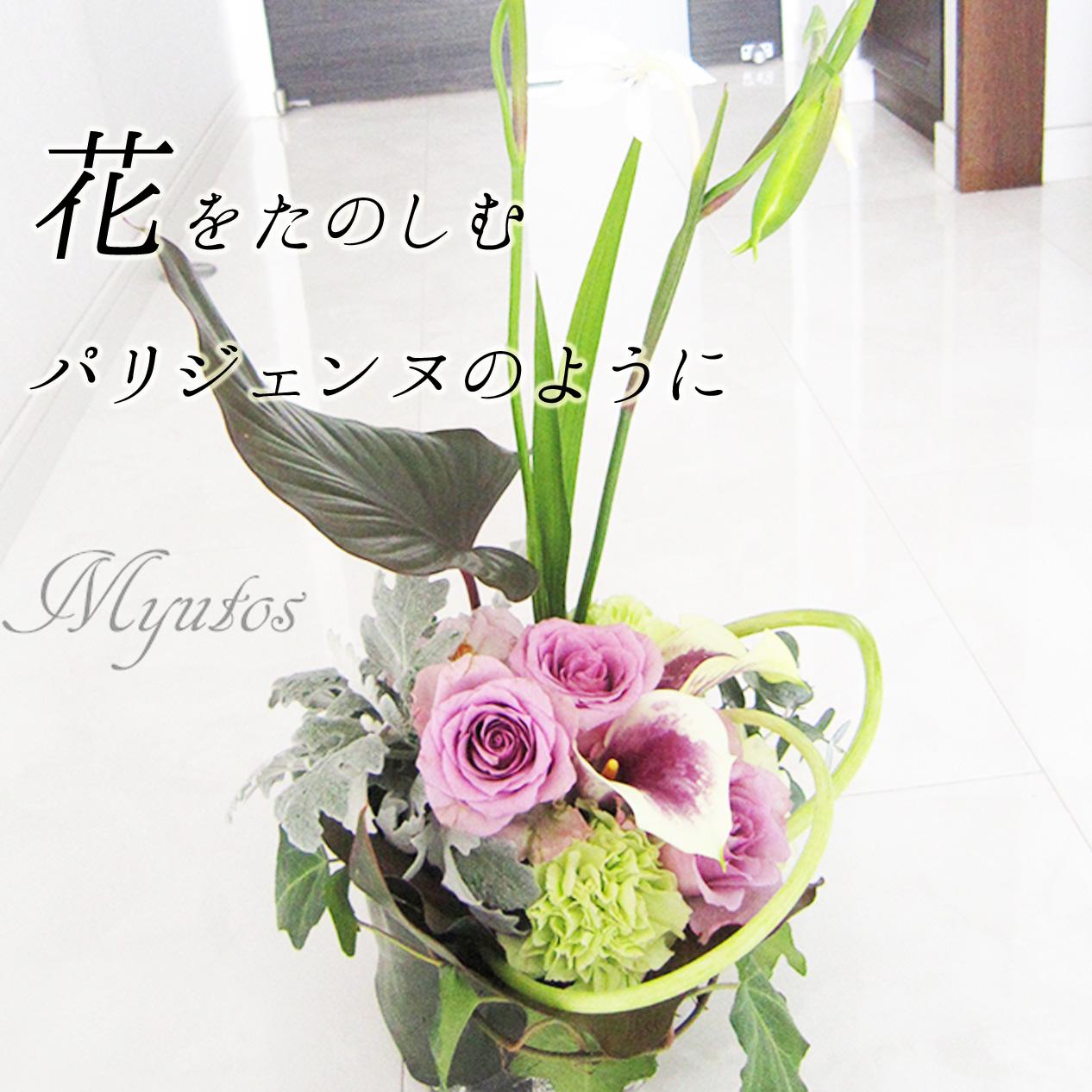 sp_image_2