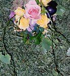DP22 生花