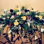 DP23 生花